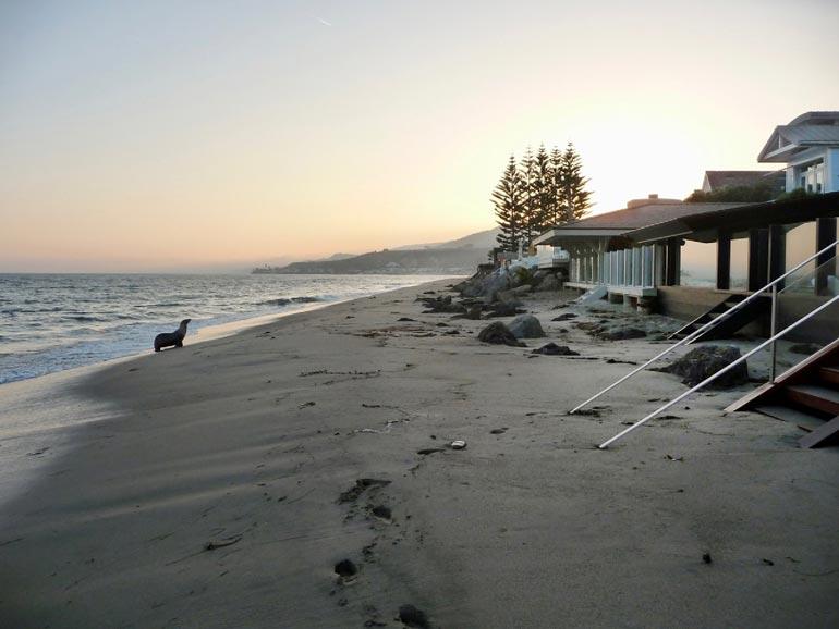 Suojaisalta porealtaalla varustellulta rantapatiolta johtaa polku omaan yksityisrantaan.