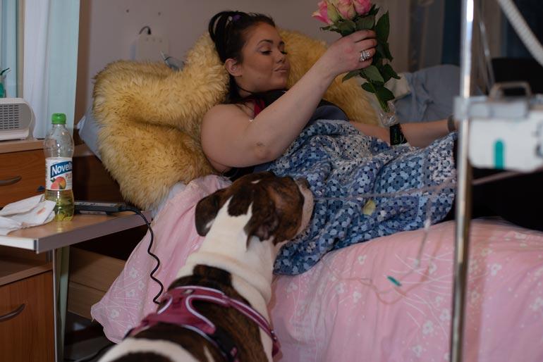 Rakas Dina-koira ei ole enää Terhokodissa Janitan seurana.