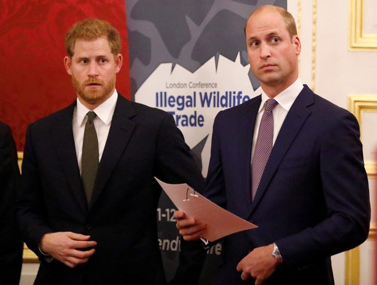 Prinssiveljekset Harry ja William ilmoittivat yhdessä medialle, ettei heidän välillään ole eripuraa.