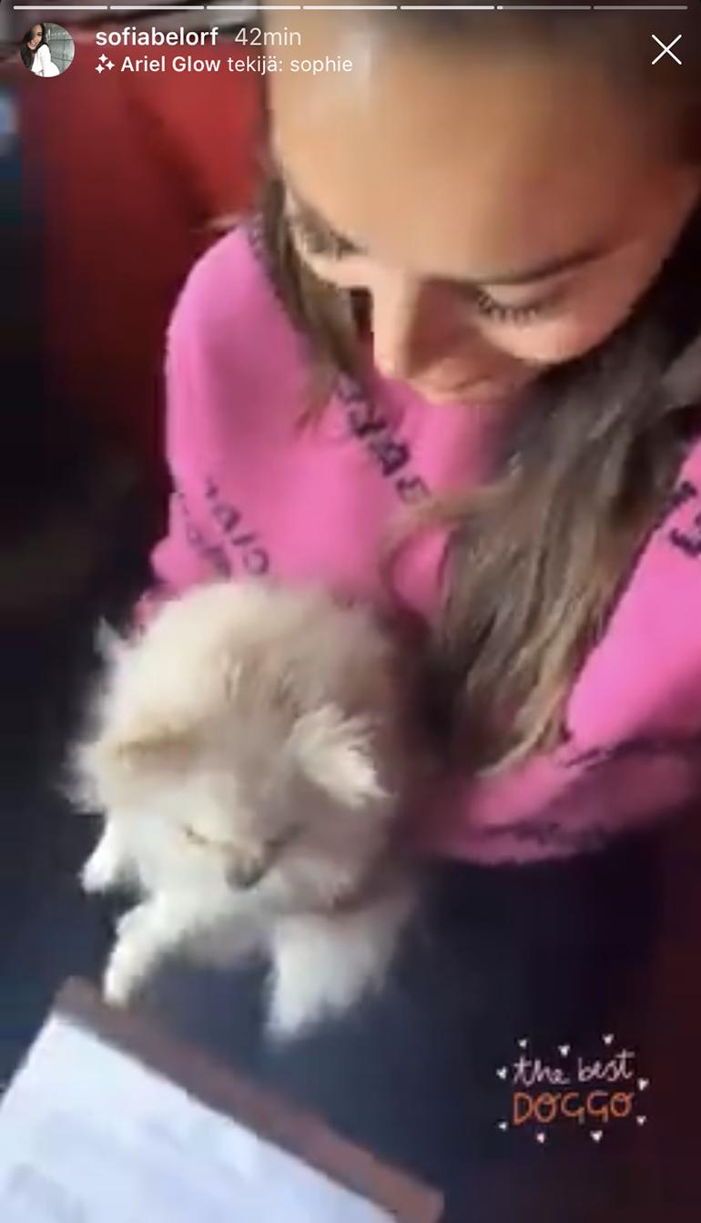 Bambi ja Sofia