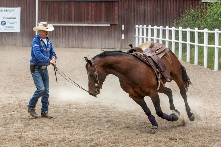 Karin laji on lännenratsastus, jossa kypärän sijasta päässä on stetson ja jaloissa kannustimin varustetut buutsit. – Hevosta ohjataan kannustimilla, ei raipalla.
