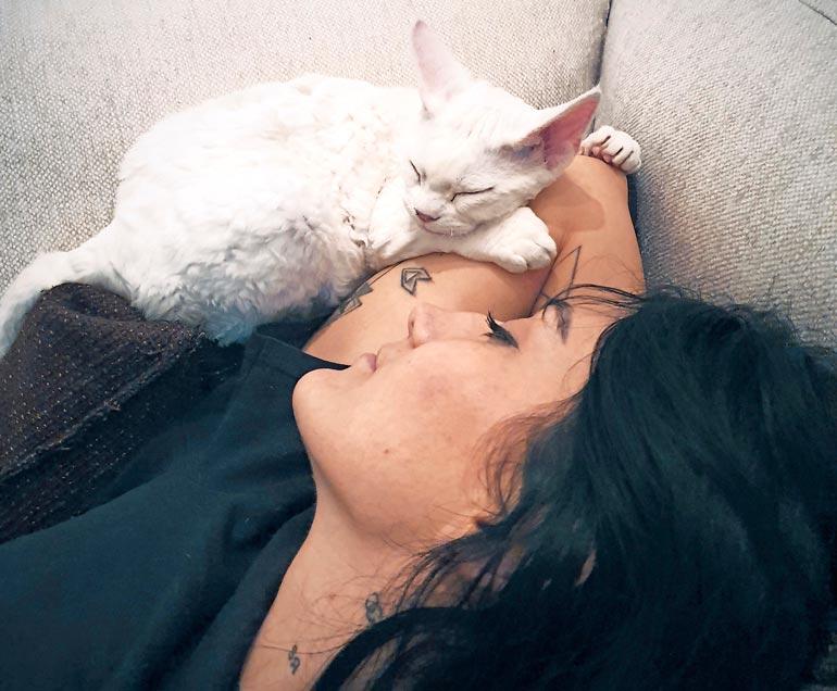 Voldemort on tiukasta ulkonäöstään huolimatta ihmisrakas. Kuvassa kissa nukkuu Armanin Senay-rakkaan kanssa.
