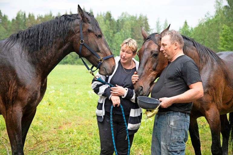Niina Manninen ja Eero Toikka ostivat karkumatkalle lähteneen Simo-sonnin lemmikikseen. – Muuten sitä olisi odottanut teuraaksi joutuminen, Niina tietää.