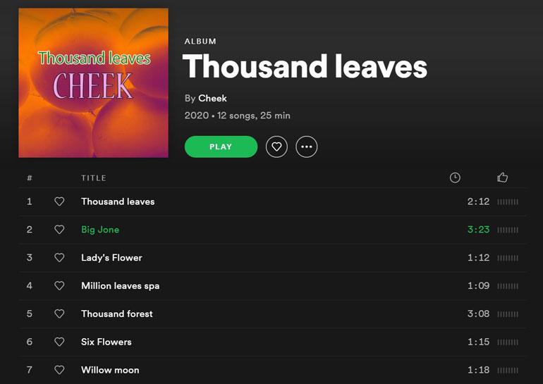 Tältä näytti Cheek-nimisen jazz-artistin Thousand Leaves -albumi uransa lopettaneen suomalaisräppärin Spotify-tilillä keskiviikkona 8. heinäkuuta 2020. Kuvakaappaus Cheekin Spofity-tililtä.