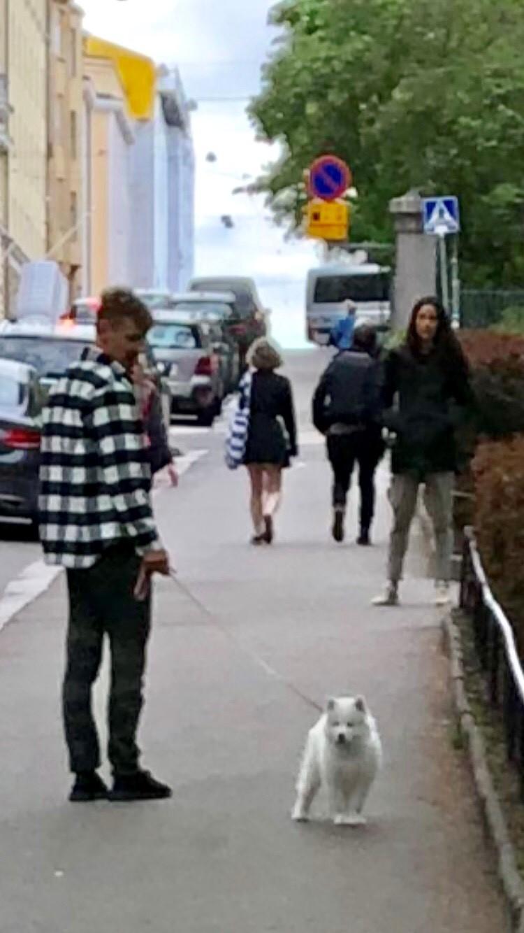 Rakastavaiset hankkivat keväällä Taiga-koiran, jolla on oma tili Instagramissa.