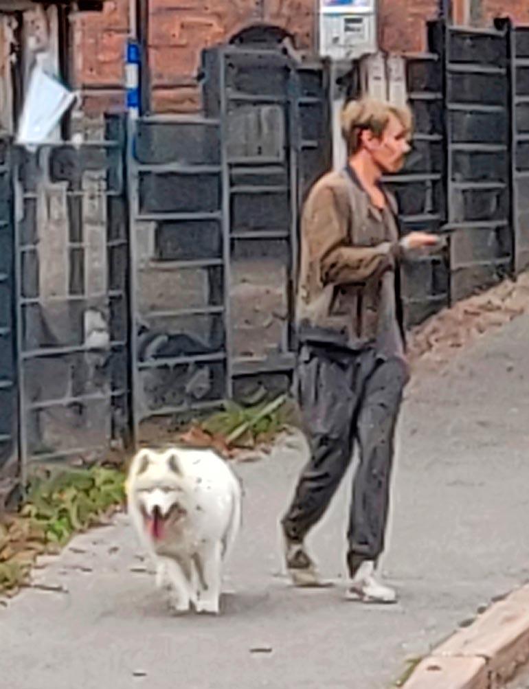 Jasper Pääkkönen ja Taiga-koira