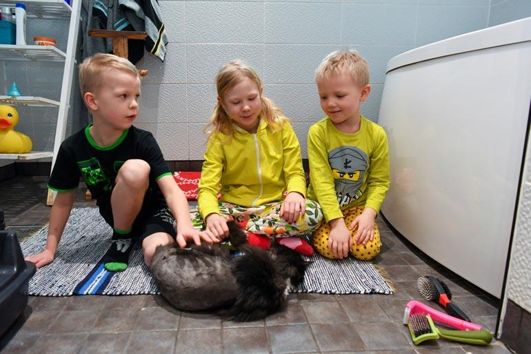 Myös Netan veljet Jero ja Kent huolehtivat, että Kostilla riittää ruokaa ja rapsutuksia.