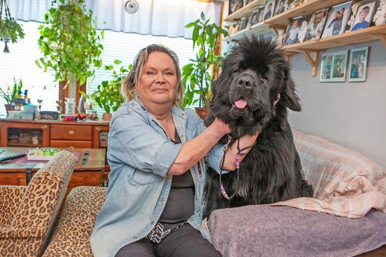 Liisa harjaa koiriaan, ja saksetkin pysyvät käsissä. – On ihmeellistä, miten ihminen tottuu ihan pienilläkin sormentyngillä tekemään tavallisia asioita.