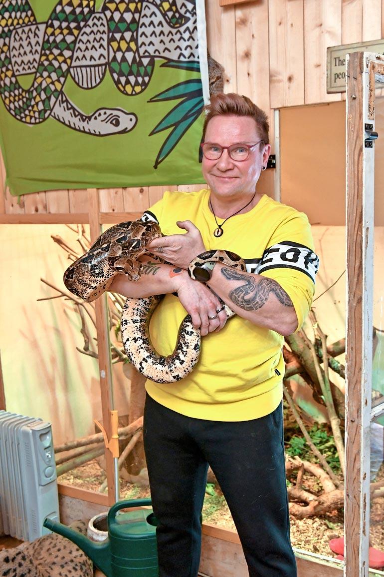 Tämän kokoisen jättimadon hankkimista on Timon mukaan  harkittava  huolella. Käärmeet vaativat  tilan lisäksi niille  sopivat olot lämmitystä myöten.