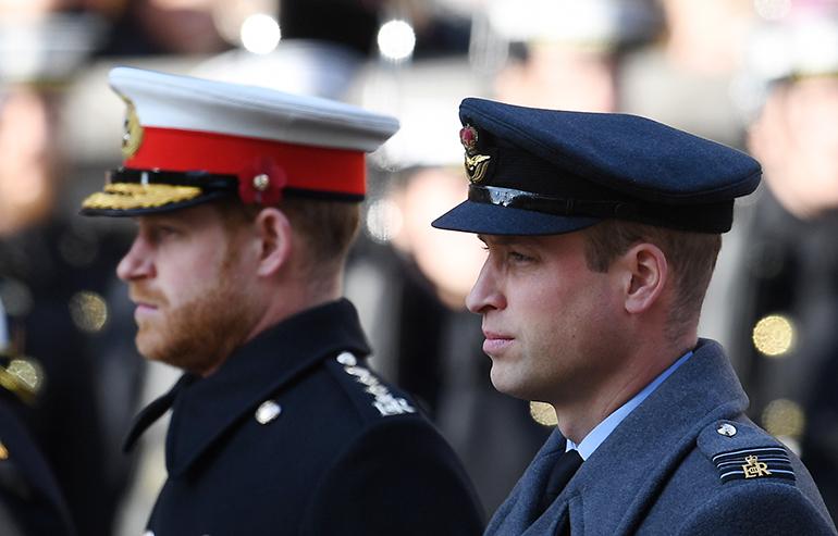 Prinssit Harry ja William