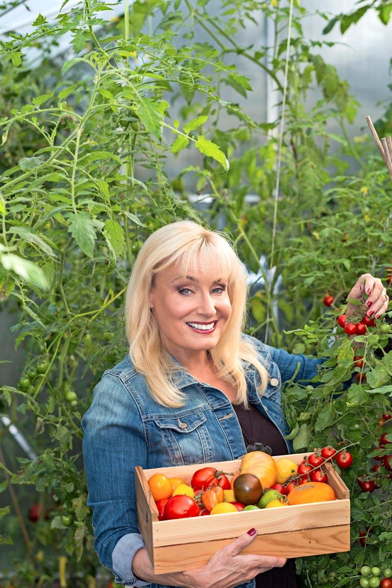 Kesäaamuna Sonja suuntaa ensimmäiseksi kasvihuoneelle. Hänelle tomaatit ovat kesäkavereita, joista on iloa joulupöydässäkin.
