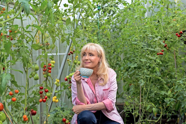 Laulaja sanoo sadonkorjuun olevan yhtä juhlaa, koska tomaatista on moneksi. – Teen niistä murskaa, tomaattikastikkeita, ketsuppia ja paljon muuta.