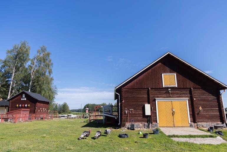 Wanha Markki sijaitsee eteläpohjalaisissa perinnemaisemissa.