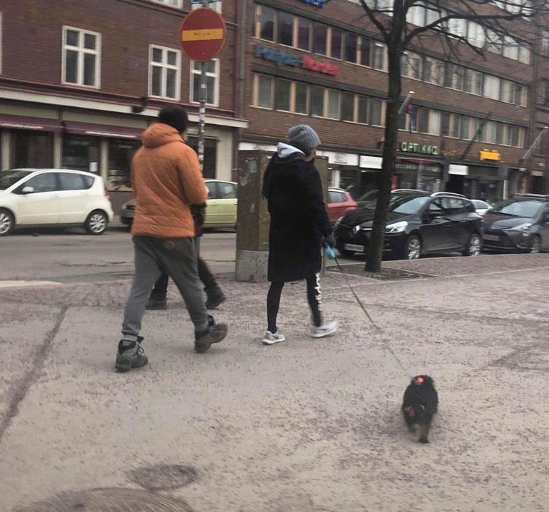 Aku Hirviniemi ja Sonja Kailassaari ulkoiluttivat koiraa.