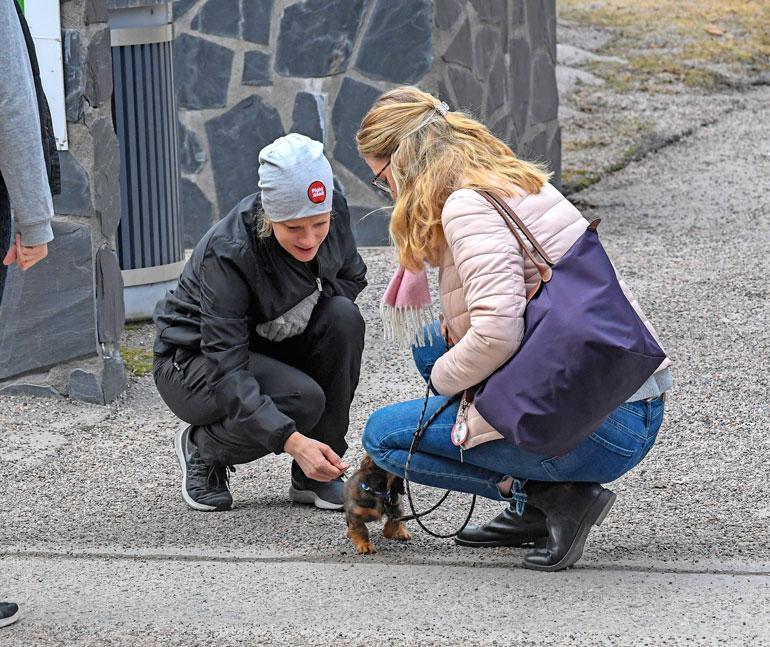 Laura pysähtyi juttelemaan ihmisille sekä silitteli näiden koiria.
