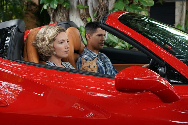 Sarjaa haluttiin modernisoida, ja Magnumin vastapariksi vaihdettiin nainen, jota näyttelee Perdita Weeks.
