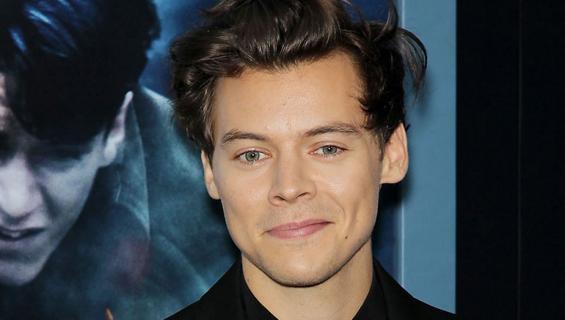 Harry Styles punaisella matolla