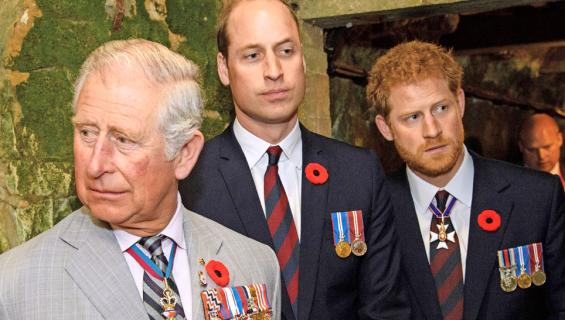 Walesin prinssi Charles, prinssit William ja Harry