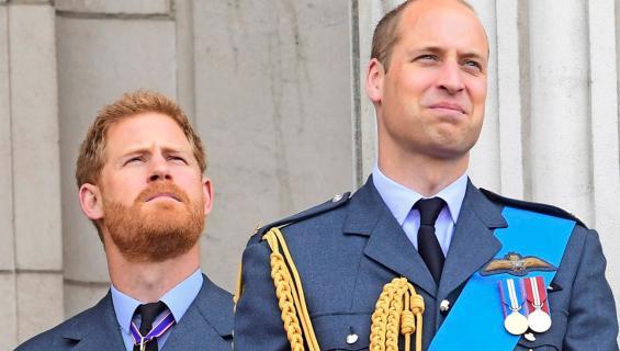 Ison-Britannian prinssit William ja Harry
