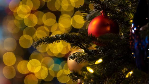 Joulukoristeet poikivat naapuririidan.