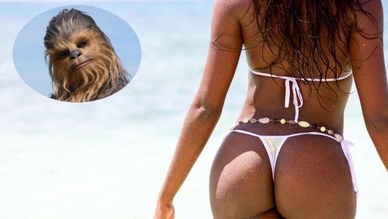 Chewbacca osallistuu juhliin!