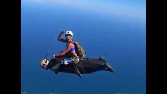 Rodeota taivaalla - katso laskuvarjohyppääjien huima ratsastustemppu!