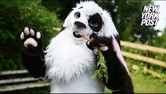 Bunny Man käytti yli 10 000 euroa näyttääkseen jänikseltä - katso video!