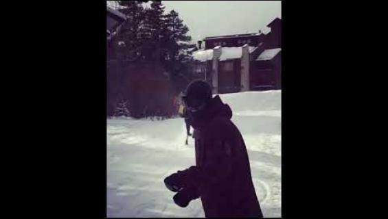Hirvi jahtasi hiihtäjiä Coloradossa - hurja video!