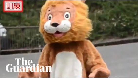 Huonoin harjoitus ikinä? Eläintarha simuloi leijonan pakoa eläinasuun puketuneen työntekijän avulla!