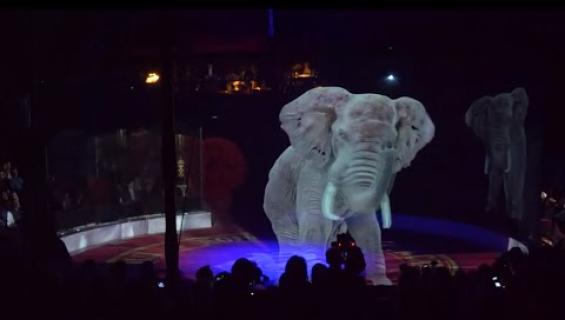 Maailman esimmäinen cruelty free-sirkus vaihtoi eläimet 3D-hologrammeihin!