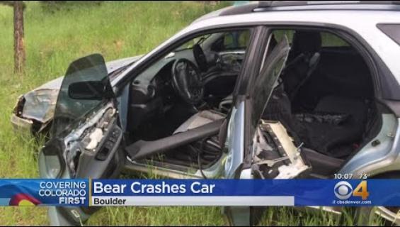 Karhu romutti liikkeelle laittamansa henkilöauton!
