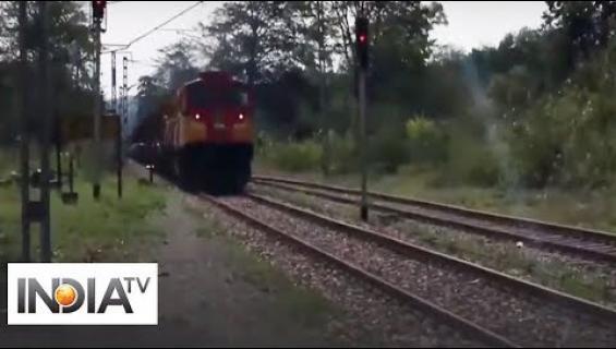 Intialainen rautatieyhtiö karkottaa norsut raiteelta mehiläisten surinalla!