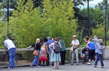 Eläintarhasta katosi eläimiä.
