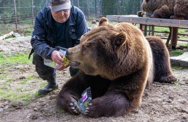 Juuso-karhu ja Sulo Karjalainen