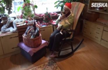 Aini, 82, laittaa eläkkeensä löytökissojen pelastamiseen: näin Seiska muisti häntä jouluna!