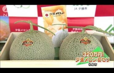 Meloneista maksettiin ennätyshinta Japanissa! Katso video!