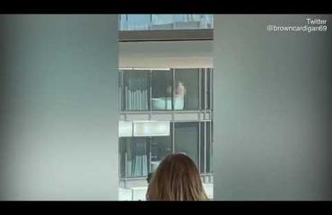 Kiihkeän pariskunnan lemmenhetki näkyi ikkunasta koko toimiston väelle - video julki Twitterissä!