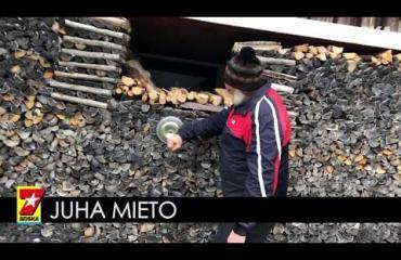 """Onko tässä Pohjanmaan mahtavin halkopino? Juha Mieto, 70, pistää puuta pinoon järisyttäviä määriä - """"Kyllä siinä niin monta halkoa on, notta..."""""""