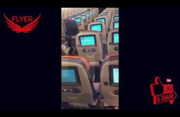 Voi ei! Pulu livahti matkustajakoneeseen - katso kuinka lintu pakenee matkustamohenkilökuntaa penkkirivien välissä!